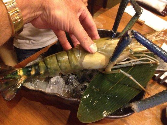 Tsukitei Japanese Dining: Huge prawn