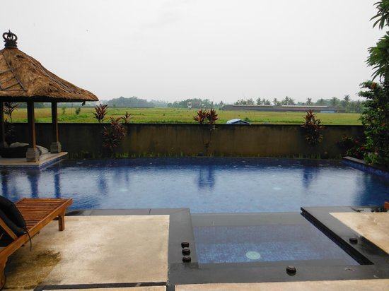 Villa Ayo : beautiful pool so relaxing in afternons