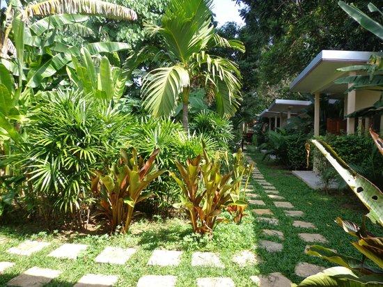Dacha Resort: Giardino
