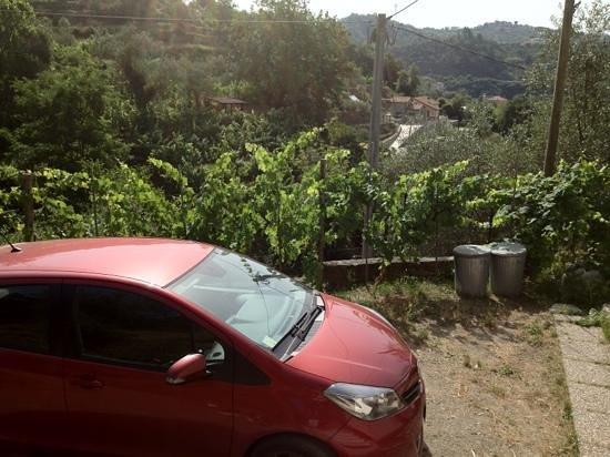 Da Fiorina: la vista dal terrapieno che ospita la struttura
