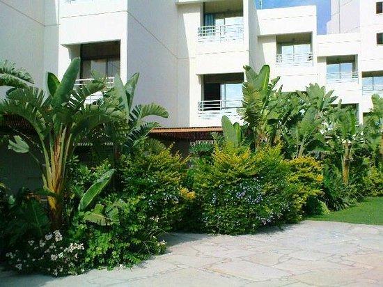Capo Bay Hotel: Hotel´s nature 