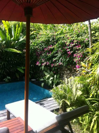 Bali Pavilions: Private pool