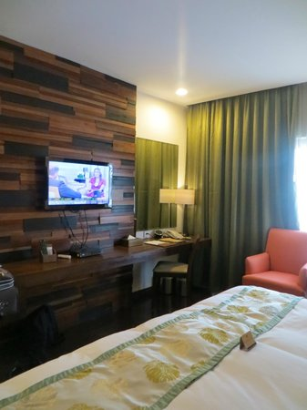 The Cocoon Boutique Hotel : Television