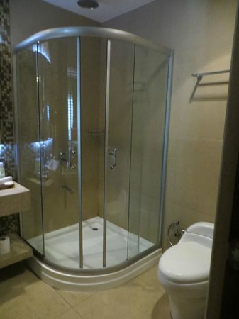 The Cocoon Boutique Hotel: Shower