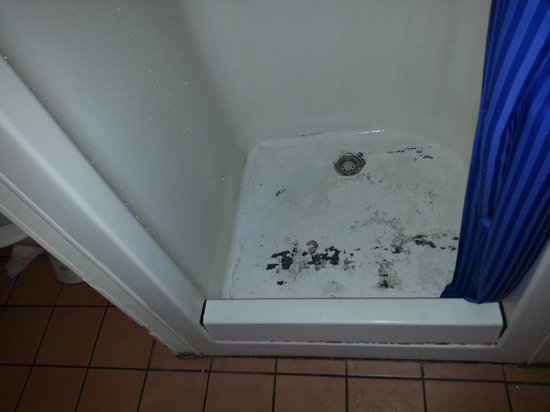 Beaches Backpackers: Never cleaned bathroom