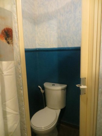 El Canonero Diving & Beach Resort: Toilet. Weird door never shut all the way.