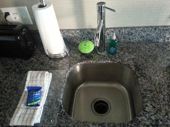 Residence Inn Boston Logan Airport/Chelsea: the sink