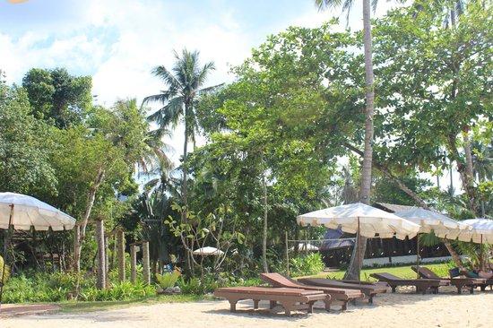 Koh Chang Cliff Beach Resort: Blick vom Strand zur Hotelanlage