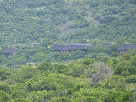 Pumba Private Game Reserve: The Msenge Bush Lodge