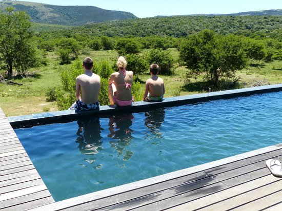 Pumba Private Game Reserve: Lodge pool