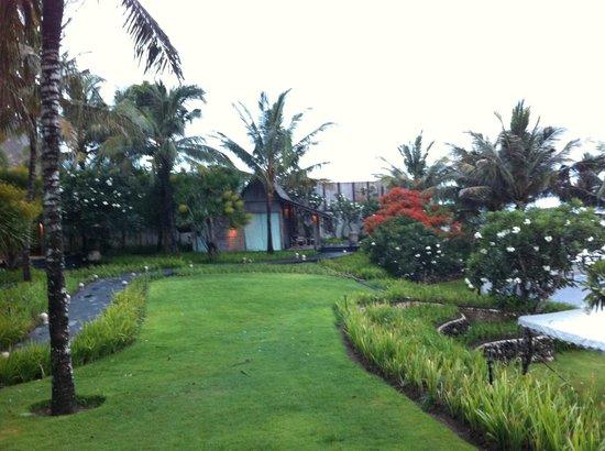 Khayangan Estate: Lush grass
