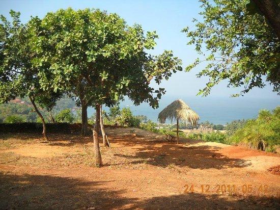 Paradise Holiday Cottages Gokarna 호텔 리뷰 Amp 가격 비교