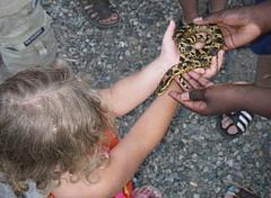 Scales Nature Park : The kids got to hold snakes there
