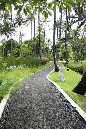 Melia Bali:                   Taman