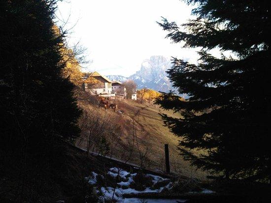 Gasthof Bad Siess: Dintorni