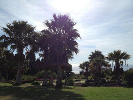 Tecina Golf: Garten von Eden ...
