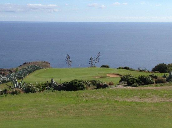Tecina Golf: Green # 10