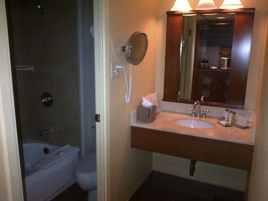 DoubleTree DFW Airport North: Bathroom