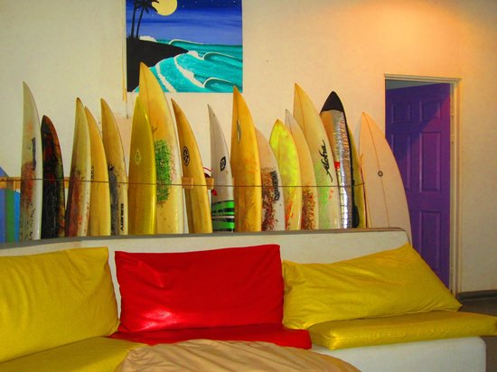 La Oveja Negra Hostel and Surf Camp : common area
