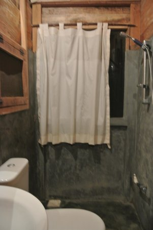 Thick Forest: Bathroom