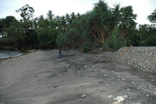 Rasa Seni Hotel Resort : Rasa Seni Beach at normal Season