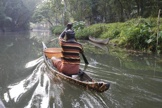 GK's Riverview Homestay: Backwaters canal, Aymanam, Kerala
