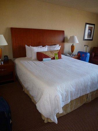 Hilton Garden Inn San Francisco/Oakland Bay Bridge: King bed