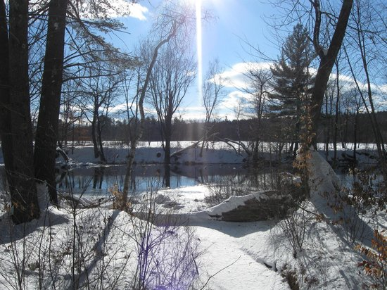 The Old Saco Inn: view from trails on Inn property