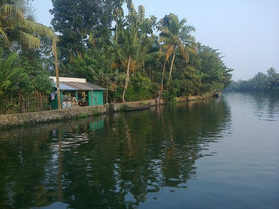 Lake View House Boats:                   The Backwaters
