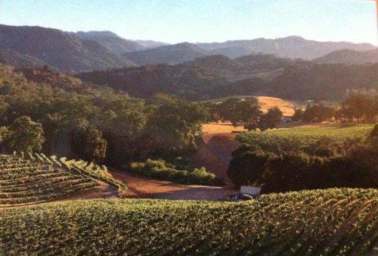 Trattoria Grappolo: Santa Ynez Valley