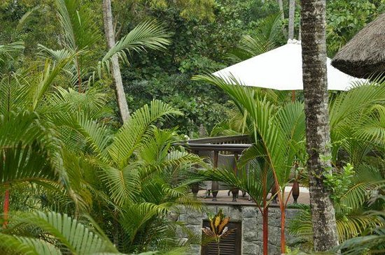 Carnoustie Ayurveda & Wellness Resort: Room deck