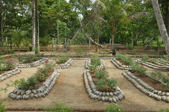 Carnoustie Ayurveda & Wellness Resort: Vegetable Garden