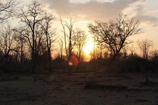 Chikoko Trails Camps : Sunset