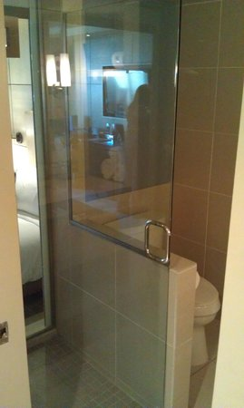 Hotel La Jolla: glass shower