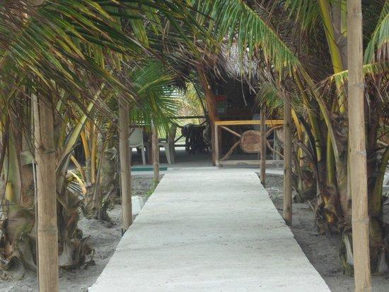 Cabana Restaurant Playa Nuestra: Pasaje de palmas en la entrada del restaurante