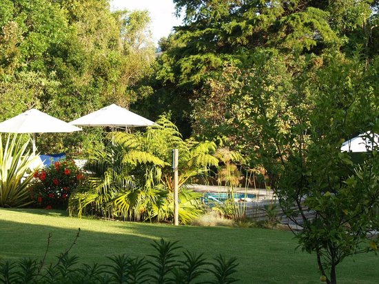 Armadillo Studios: Garden and Pool