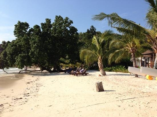 Paradee Resort: beach