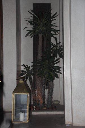 Riad Vanilla sma: lobby