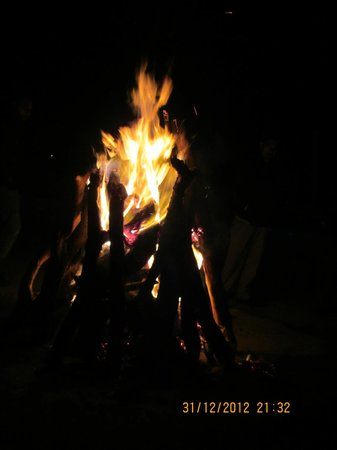 The Apple Blossom: Bonfire on New Year's eve
