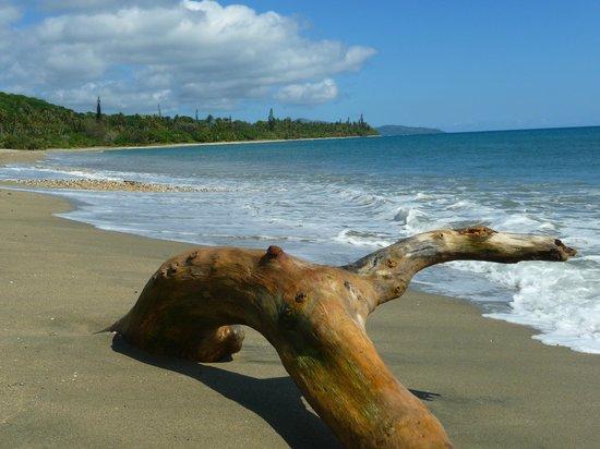 Hôtel Tieti Poindimié: La plage