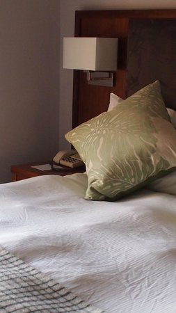 BEST WESTERN PLUS Edinburgh City Centre Bruntsfield Hotel: Bedroom