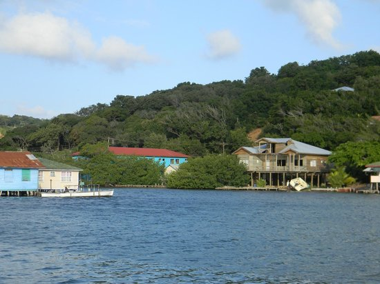 Reef House Resort: View of Oakridge from RHR boat dock