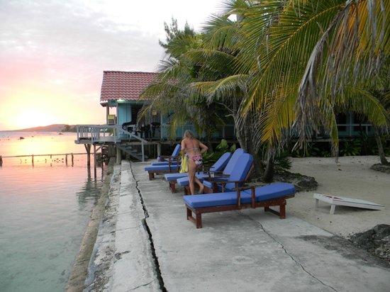 ريف هاوس ريزورت: beach area lounges 