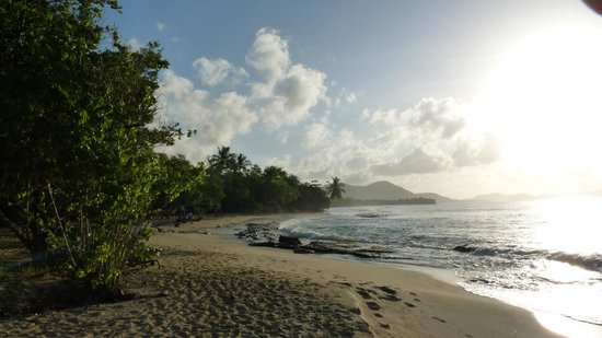Residence Hoteliere Les Cayalines: plage anse désert