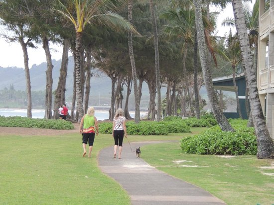 Aston Islander on the Beach: Nice walking path in front of the Islander