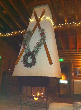 Pinetree Lodge: log fire