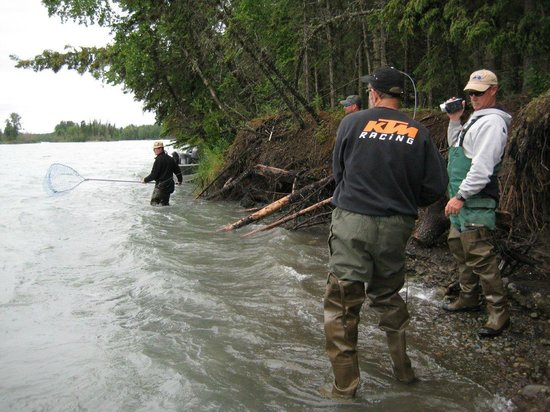 Alaska Fishing & Lodging: The Fight is on