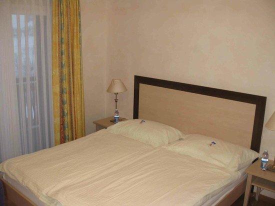 Hotel Viktoria : Letto