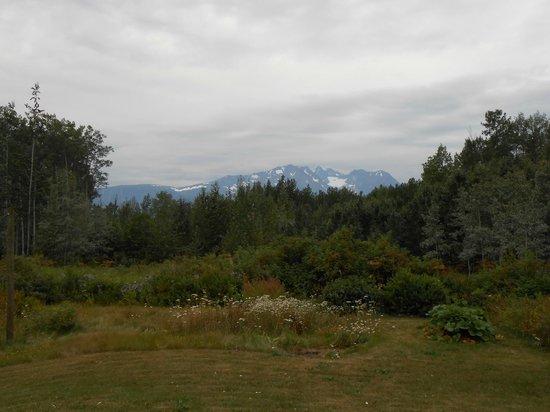 Chez Josette Bed and Breakfast: Vue de la maison sur Hudson Bay Glacier