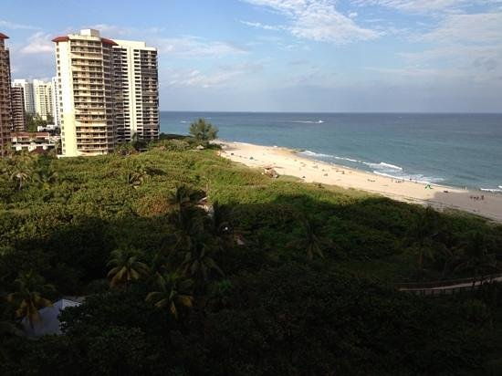Palm Beach Marriott Singer Island Beach Resort & Spa: what a view